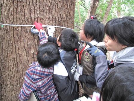 第一回えびすの森観察会